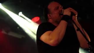 Tiger Cartel - Explode (live)