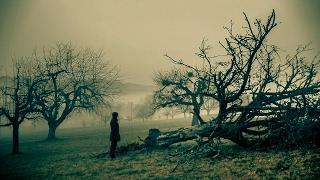 Last Leaf Down - Ghost Trails